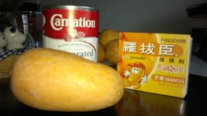 芒果布甸 1