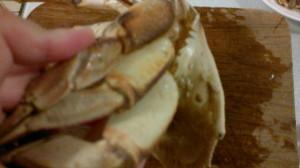 Crab 12