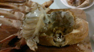 Crab 13