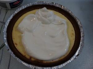 芝士蛋糕 20