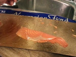 Salmon Rose 2