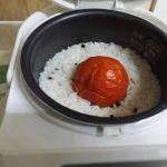 蕃茄飯 11