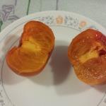 柿子布甸 2