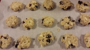 Almond Cookie 15