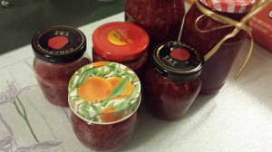 Strawberry Jam 15