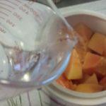 木瓜瘦肉日月魚燉湯 8
